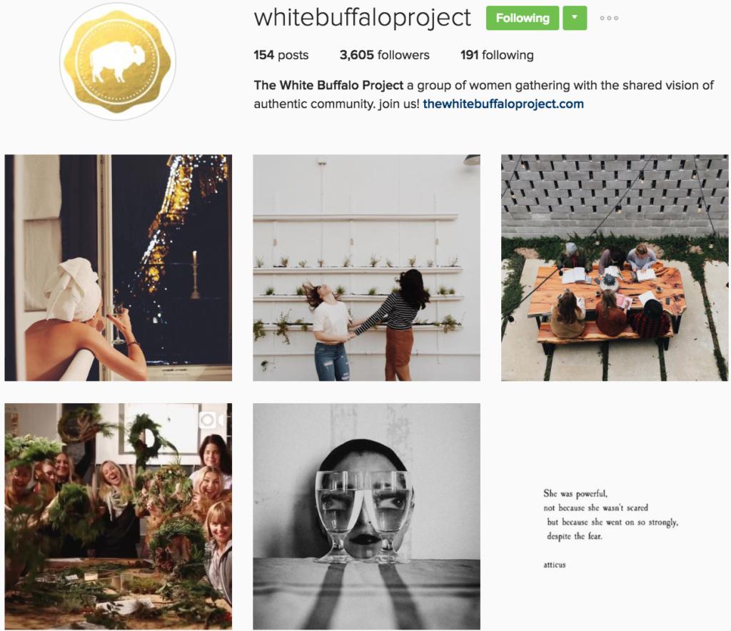 white-buffalo-project-insta-profile